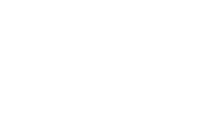excellence-aluminum-railing-300x199
